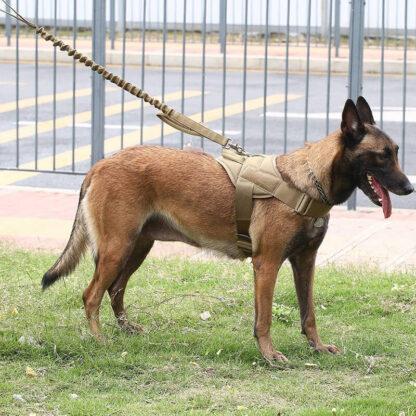 Taktična oprsnica za pse